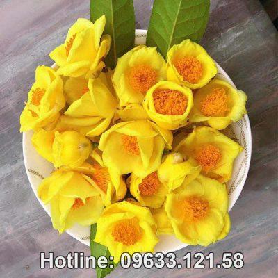 Mua trà hoa vàng ở Lạng Sơn